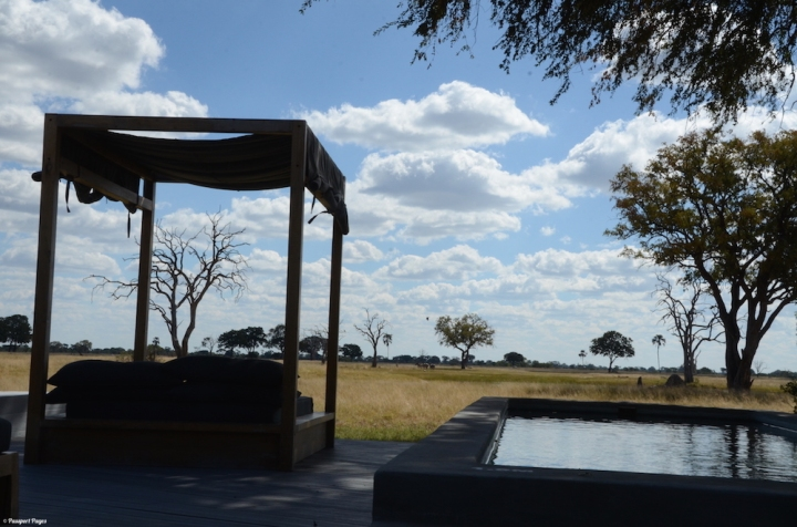 Linkwasha-watering-hole-Africa-safari-Zimbabwe-Hwange