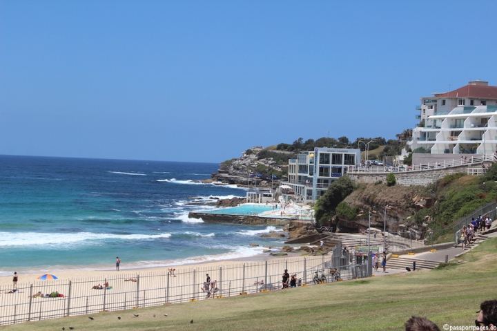 grassy-area-Bondi-Beach-Sydney-travel-blog-passportpages