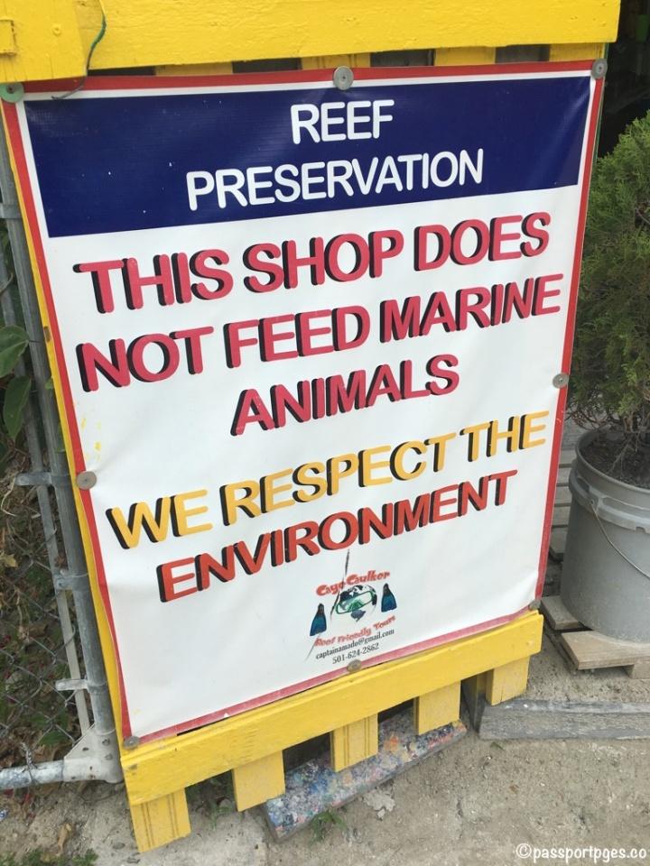 Reef-Preservation-Caye-Caulker.jpg