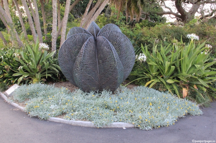 Royal-Botanic-Garden-Sydney-Australia-travel-blog-passportpages