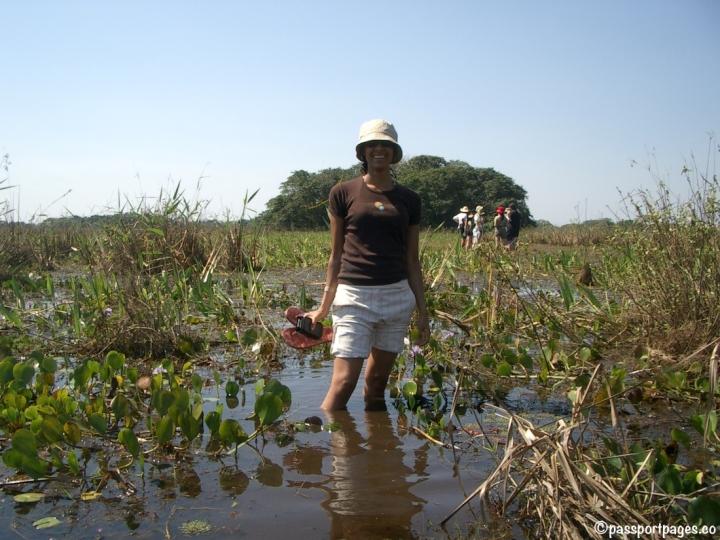 Campo-Grande-Brasil-travel-blog.jpg