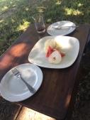 Bakers-Lodge-Murchison-Falls-Uganda-lunch-vegan-vegetarian-riverbank