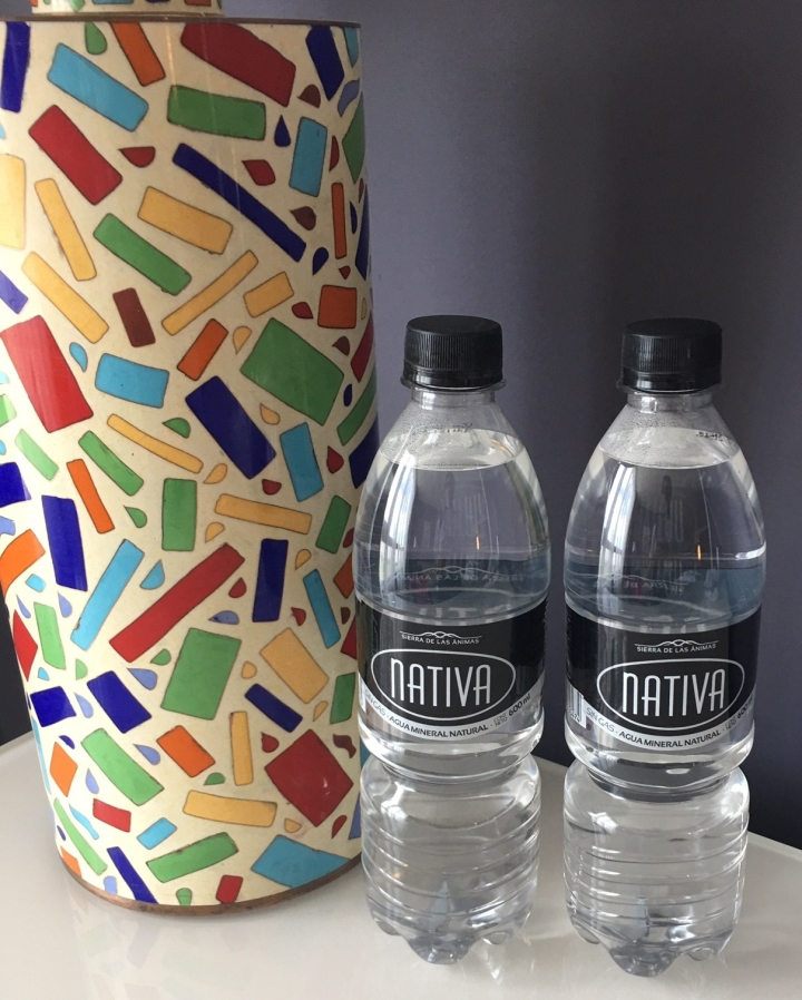 Hyatt-Centric-Montevideo-water-bottle